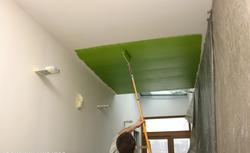 Malowanie wnętrz: farby do malowania ścian i sufitów