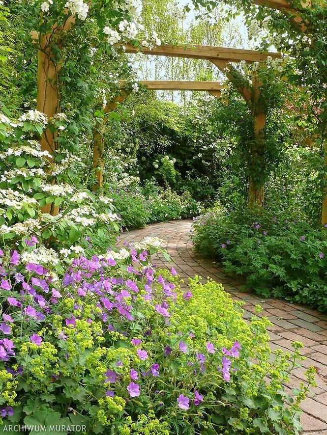 Ogród z bylinami