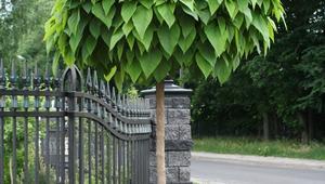 Ogrodzenia kute, czyli GALERIA ZDJĘĆ niezwykle pięknych ogrodzeń metalowych