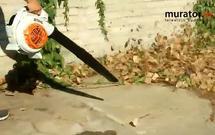 Dmuchawa do liści w mig posprząta Twój ogród. Przekonaj się! [WIDEO]