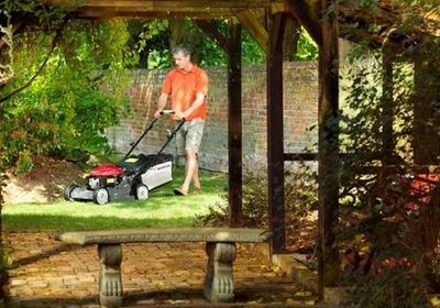 Na czym polega mulczowanie trawnika i dlaczego warto to robić?