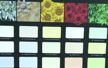 Sprawdź, jak kolory ścian oddziałowują na Twoje samopoczucie [WIDEO]