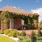 Pergola, trejaż, krata, czyli mała architektura w ogrodzie
